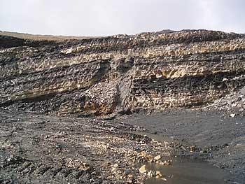 Mining Risk Assessment